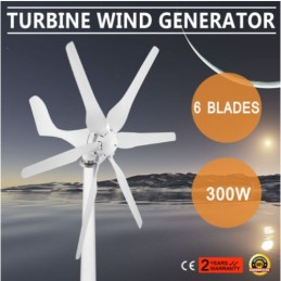 300W vėjo generatorius